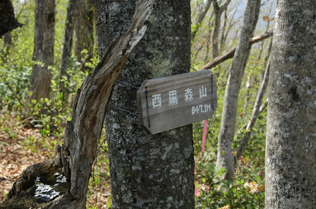 Nishiku_17