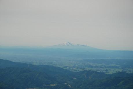Akita54