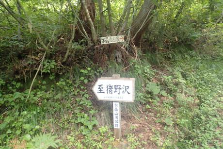 Sui_28